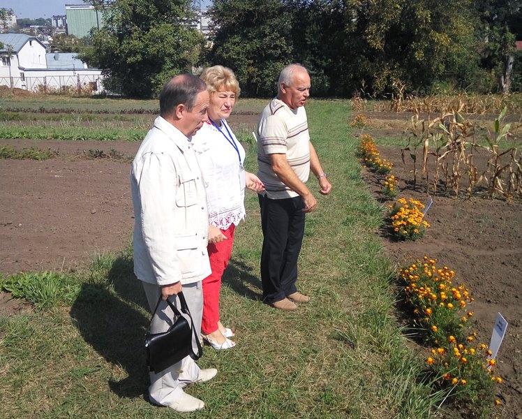 Директор Герц І. І. проводить екскурсів полями еколого-натуралістичного центру